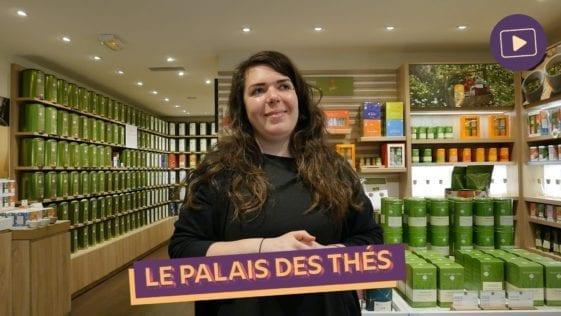 Fond videos le palais des thes